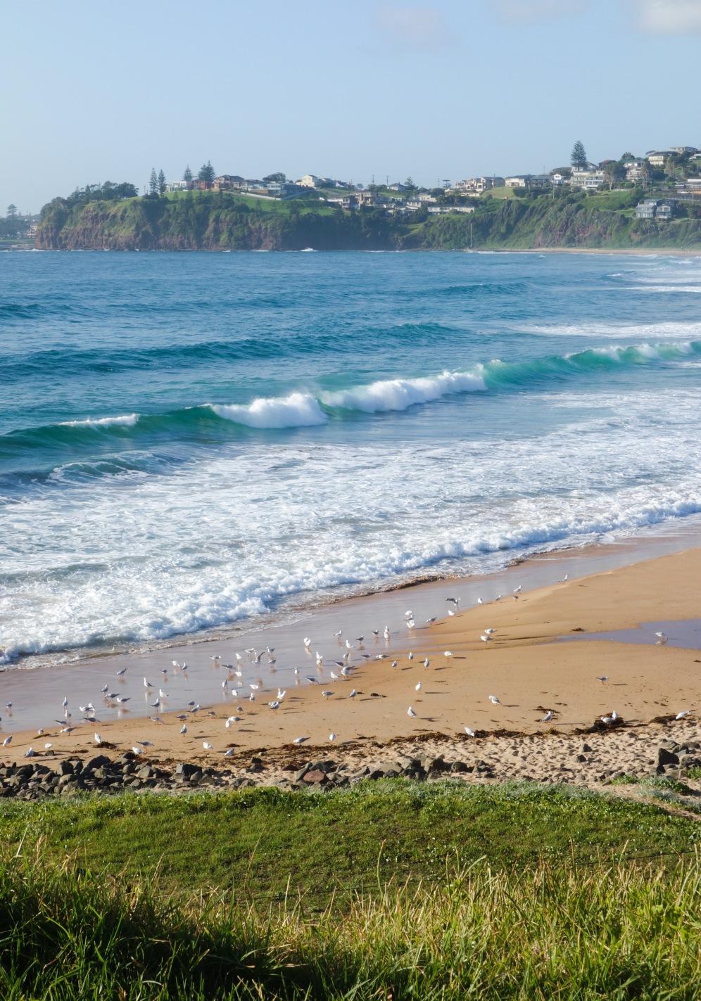 Bombo beach day